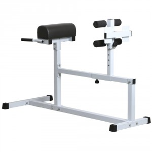 Yaheetech Hyper Extension Workout Training Bench