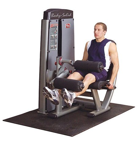 Body Solid Pro Leg Extension and Curl Machine