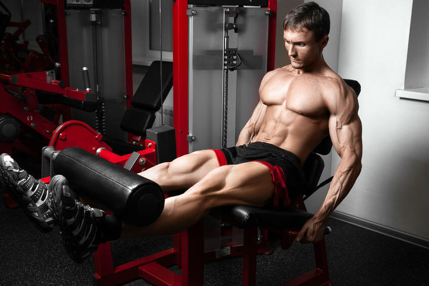 Strong bodybuilder training quads with leg extension machine