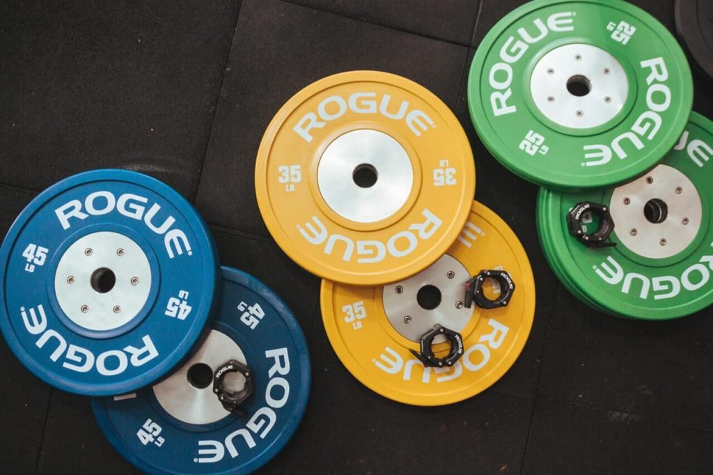 rogue gym bumper plates