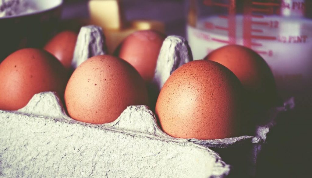 close up photo of eggs